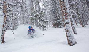 Skiing, Powder Kristen Hartel by Jon Resnick