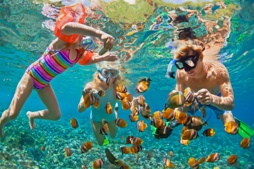 Tropical Family Snorkel