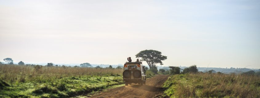 Safari trip through African Savannah, Kenya, East Africa
