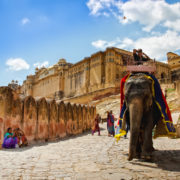 Elephant carrying tourists by Amber Fort in Jaipur, India