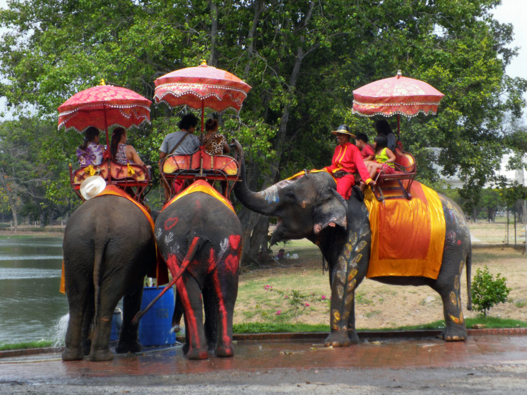 Family on Elephant Ride Tour