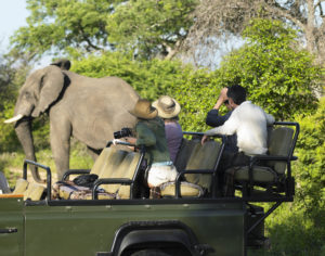 Family on Safari watching Elephant