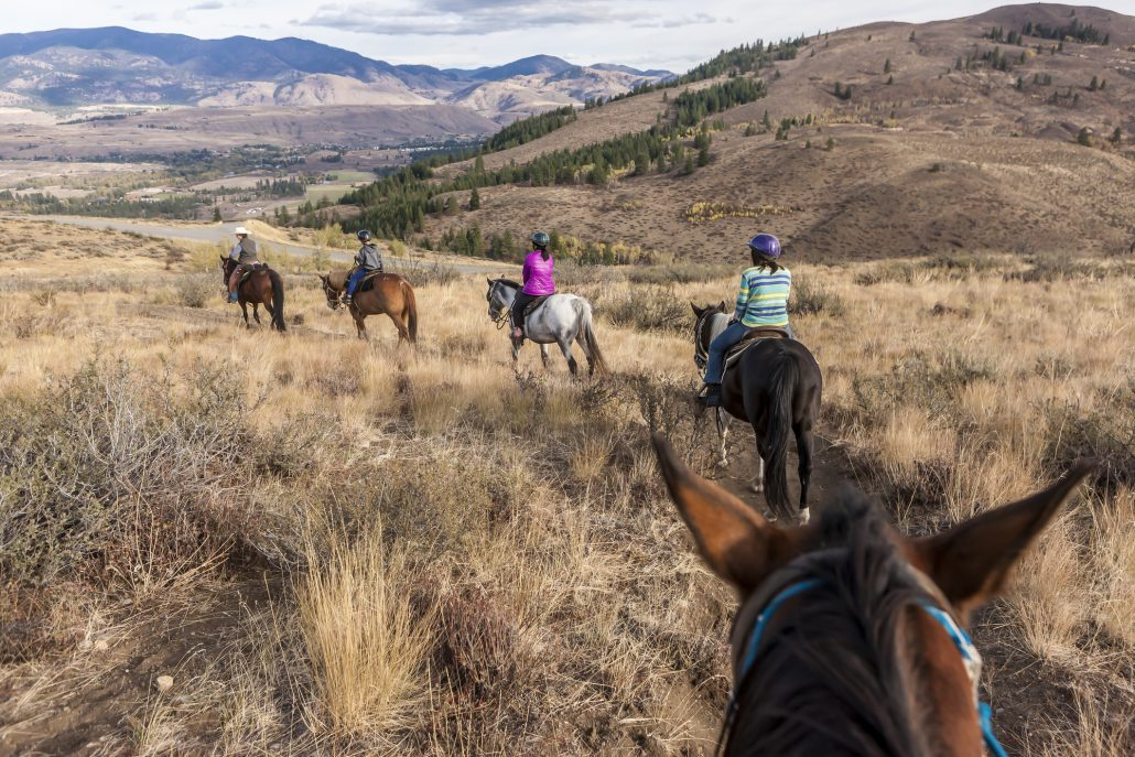 Family follows lead rider horseback riding