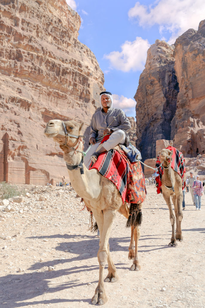 Family and Tourists in Jordan riding camels and taking a tour