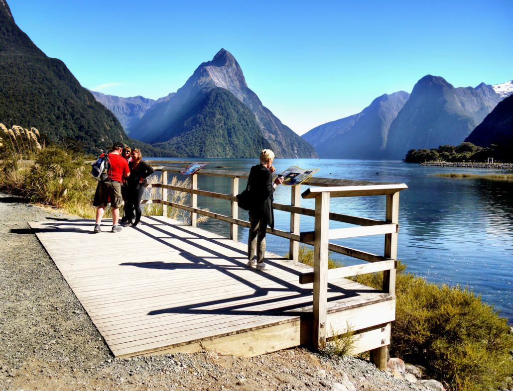 tourists looking at mountains in Milford Sound, NZ
