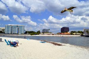 Ben T Davis Beach Tampa Florida