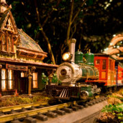 NY Botanical Garden Holiday Train Show