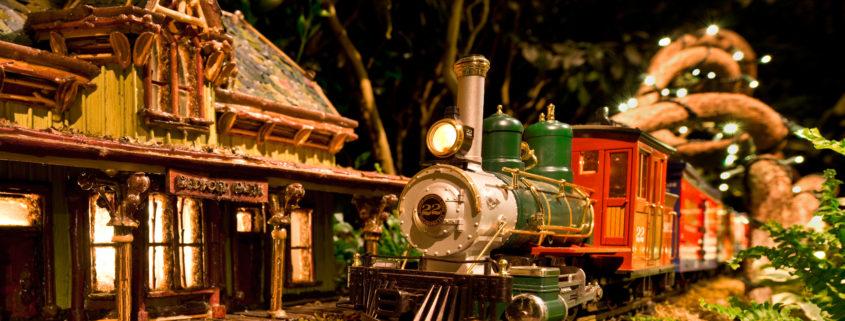 NY Botanical Garden Holiday Train Show