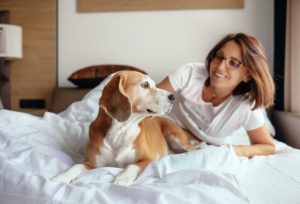 dog in hotel bed with owner