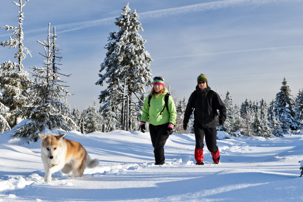 Couple Hiking in winter with dog