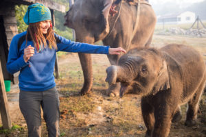 Petting elephant on tour