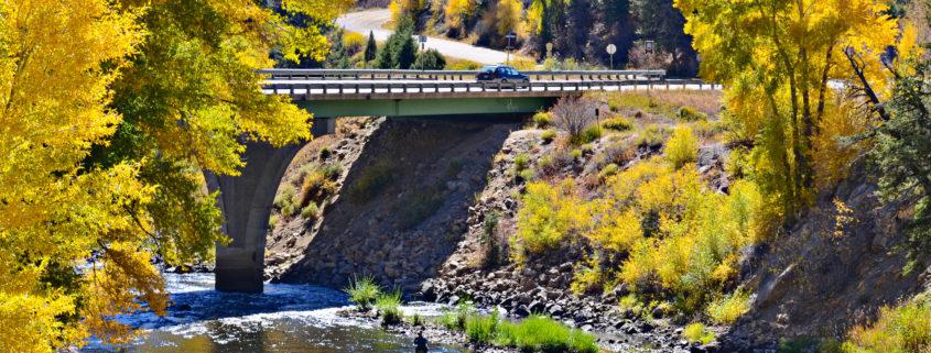 golden autumn and Colorado