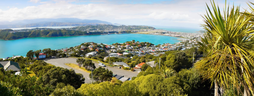 Wellington - Capital City, New Zealand. View from Mt. Victoria lookout