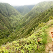 Hawaii, Waihee ridge trail, Maui, USA