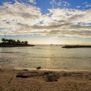 Port Ferdinand, Barbados