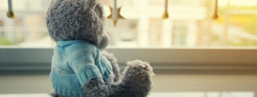 Teddy bear home alone