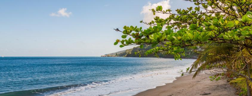 Beach in Granada, Caribbean