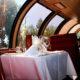 Vista Dome of the Napa Valley Wine Train