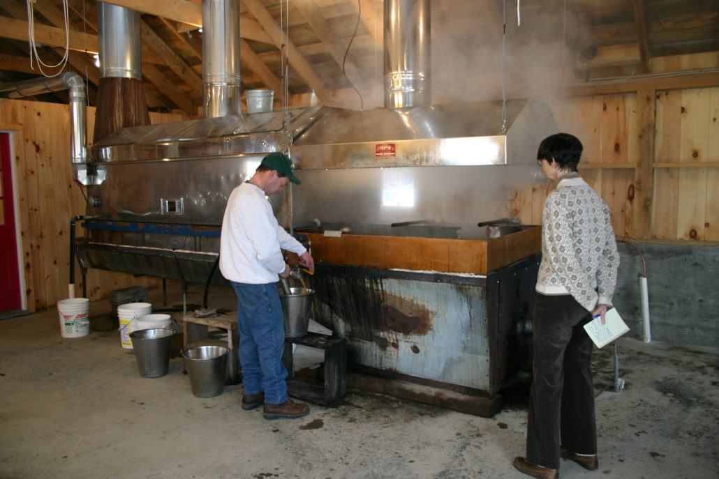 Making maple syrup in Putney, Vermont.