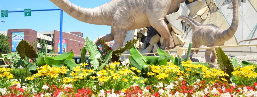 TCM Exteriors, Dino, Museum