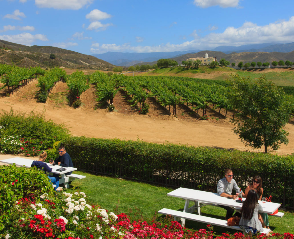 Wine Tasting, California