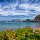 Catalina Island Harbour