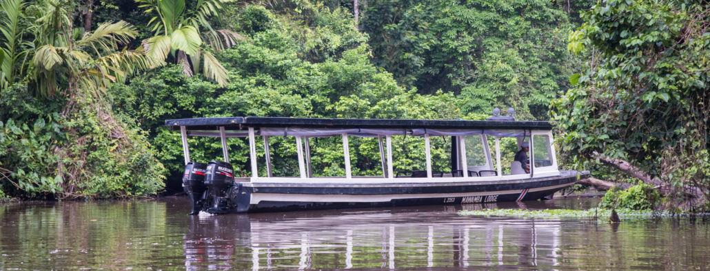 A Boat in Tortuguero National Park