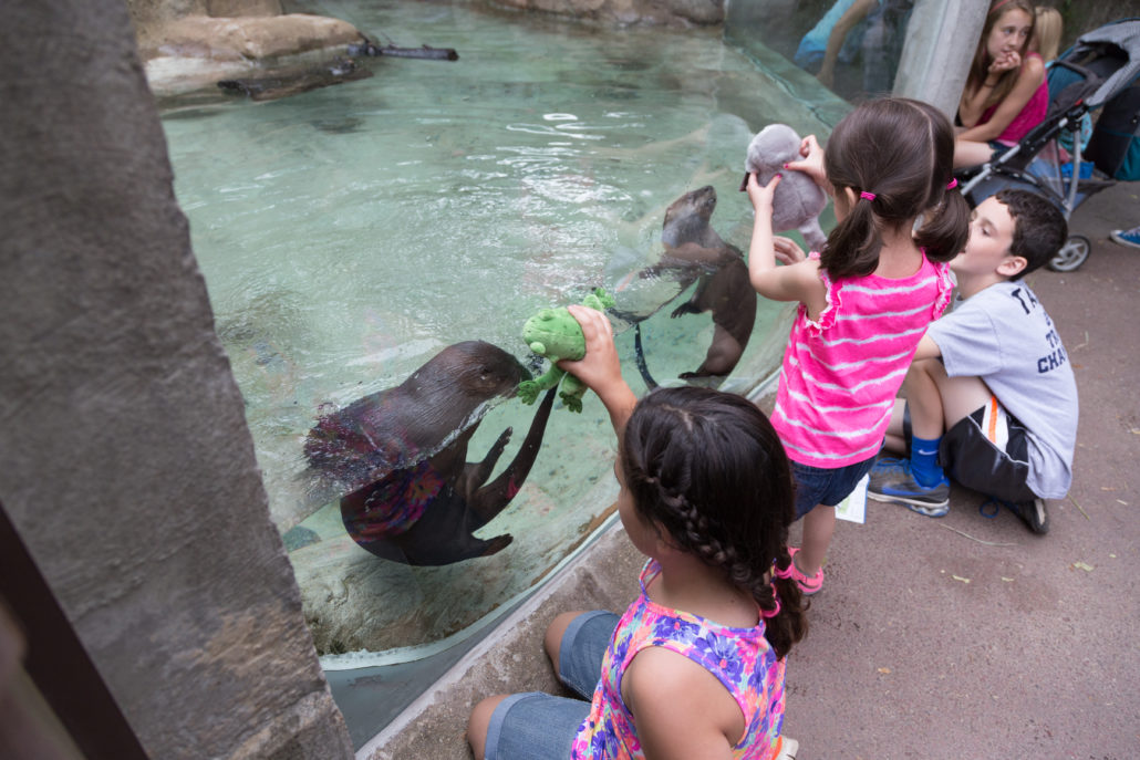 Roger Williams Park Zoo-Providence (1)