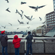 Tourists feeding flying pigeons in London