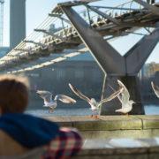 Millennium Bridge at Thames River London