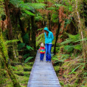 Mother with little daughter walking in the rain forest. New Zealand