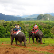 Tourists on elephants in thailand