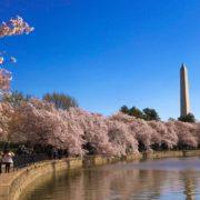 Washington DC Memorial Day weekend