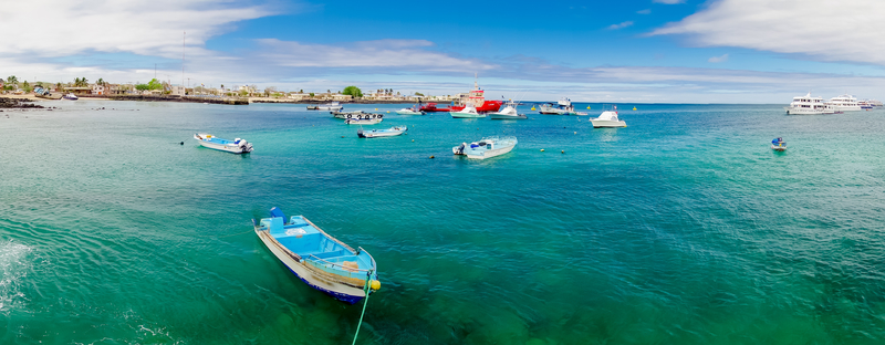 Marina in san cristobal galapagos islands ecuador. Colorful, outside.
