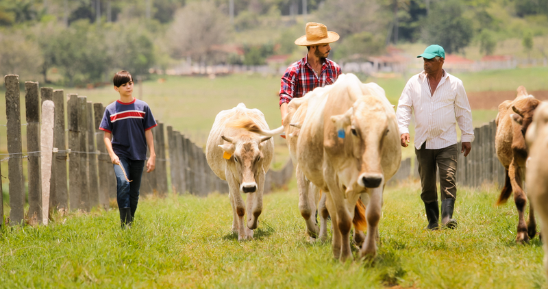 Multigenerational family at dude ranch pasturing cattle