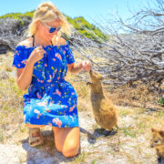 Tourist with a Quokka in Australia