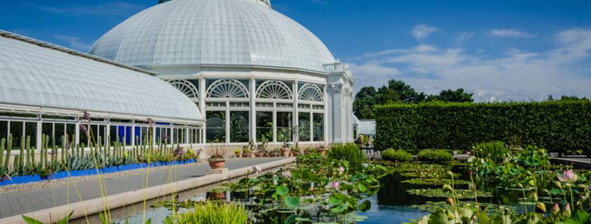 Haupt Conservatory - New York Botanical Garden