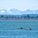 Kayaking in Pacific Ocean, Washington