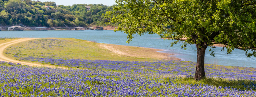 Hill Country, Texas © Bobby J Norris | Dreamstime.com