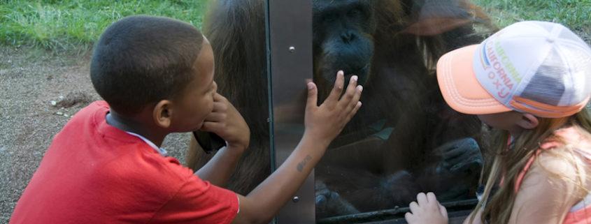 Kids at San Diego Zoo