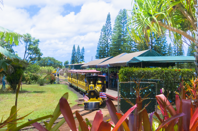 Oahu, Dole Plantation, Pineapple Express Train Tour © Markpittimages | Dreamstime.com