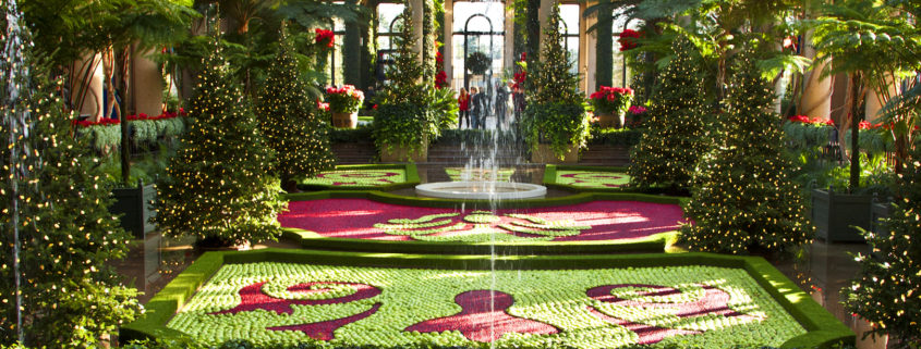 Christmas time at Longwood Gardens © Stillman Rogers