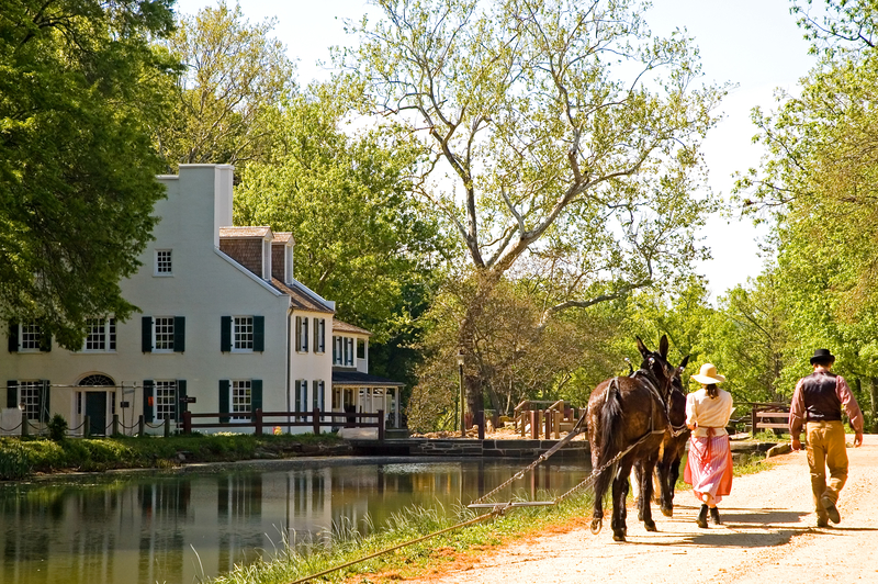 Canal Mule Team at C&O Canal, Great Falls National Park, Potomac, Maryland© Ken Cole | Dreamstime.com