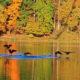 Rock Creek Regional Park, Maryland © Luckydoor | Dreamstime.com