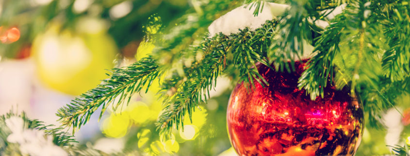 Christmas ornament © Mikhail Starodubov | Dreamstime.com