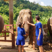 Visitors at an Elephant Sanctuary in Thailand © Lamberto Jesus Luque Perez | Dreamstime.com