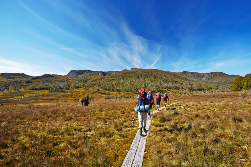 Group Hiking in Tasmania © Coolendelkid | Dreamstime.com