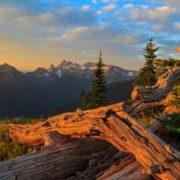 Mt. Rainier National Park, Washington State