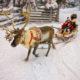 Winter Reindeer sledge racing in Ruka in Lapland in Finland
