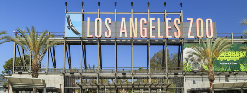 Los Angeles Zoo © Chon Kit Leong | Dreamstime.com